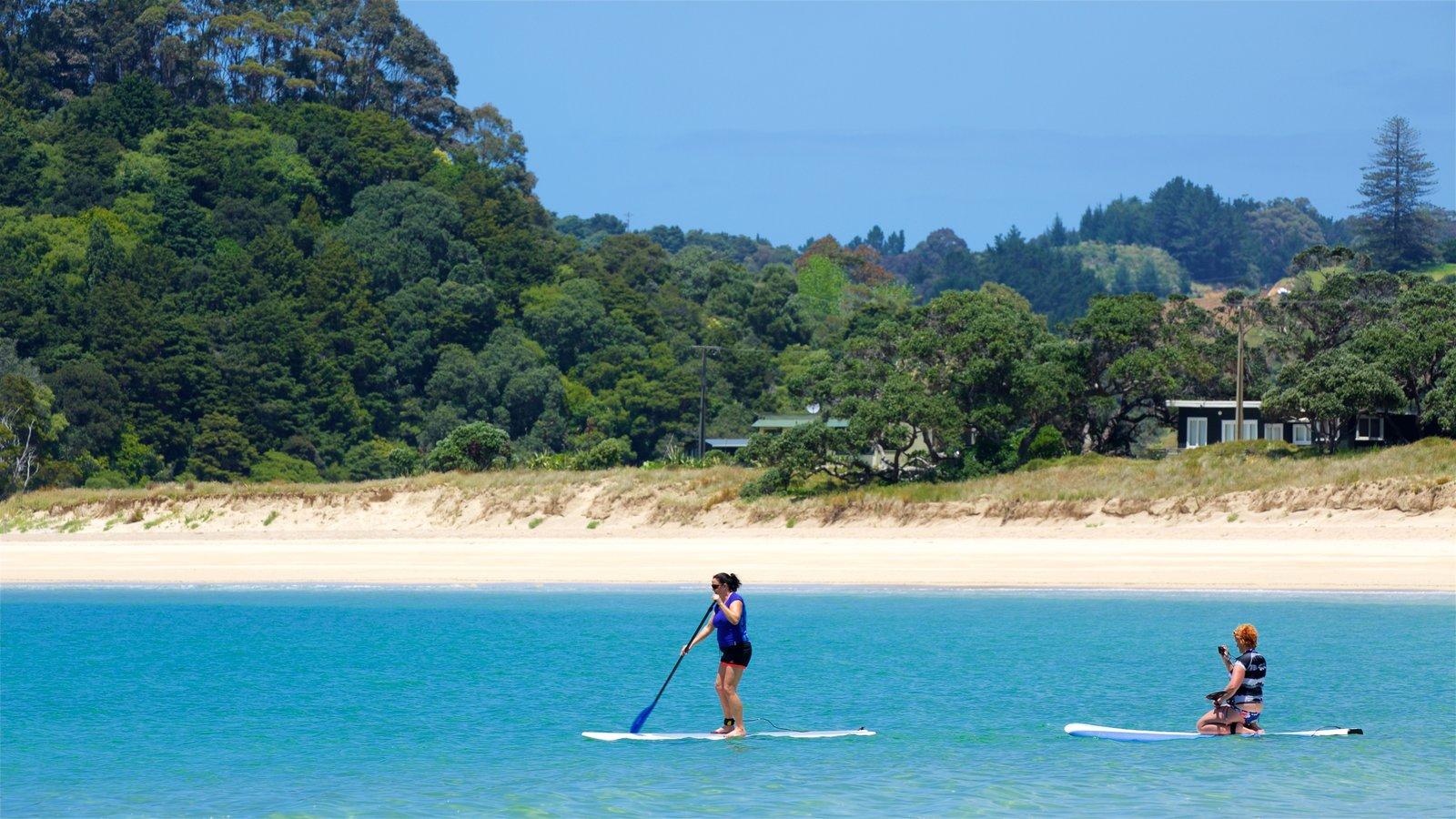 Tutukaka que incluye una playa, una bahía o puerto y deportes acuáticos