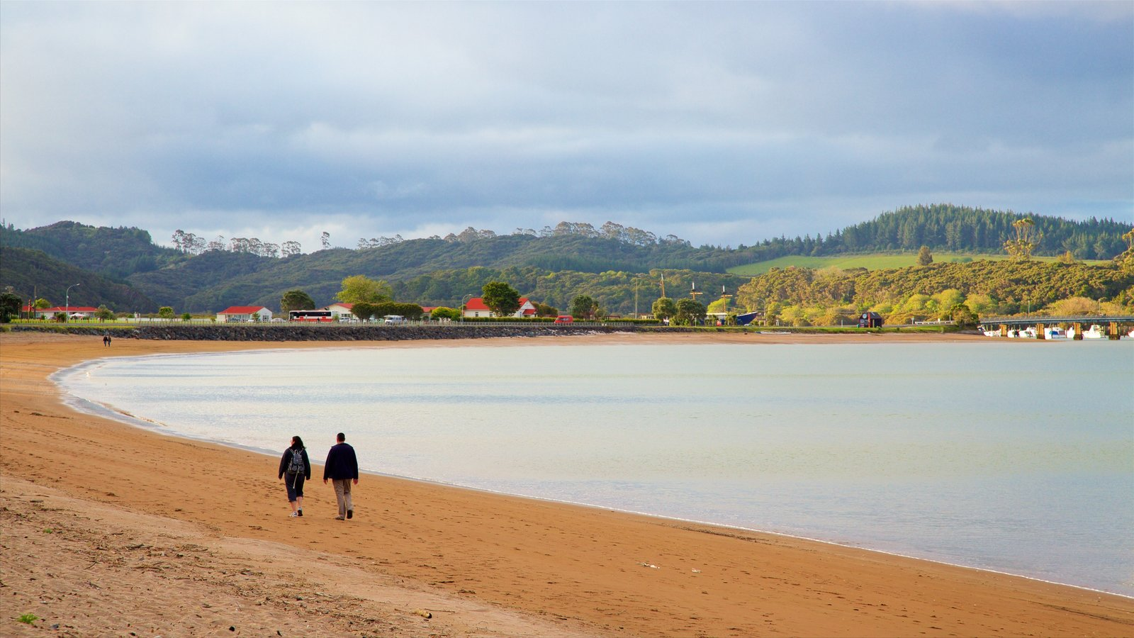 Paihia Beach showing a bay or harbor, a sandy beach and a coastal town