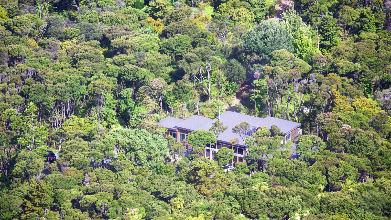 Mount Manaia showing forests and a house