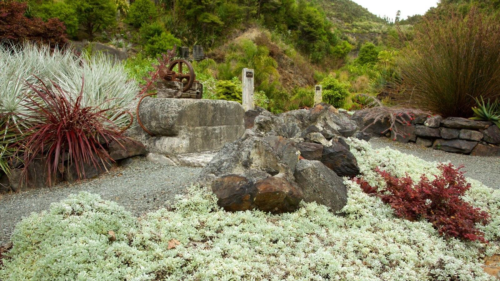 Whangarei Quarry Gardens showing a garden