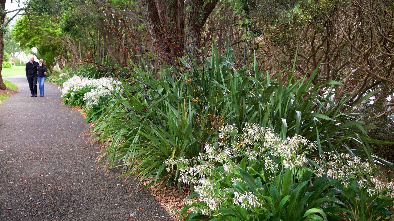 Whangarei que incluye un jardín y también una pareja