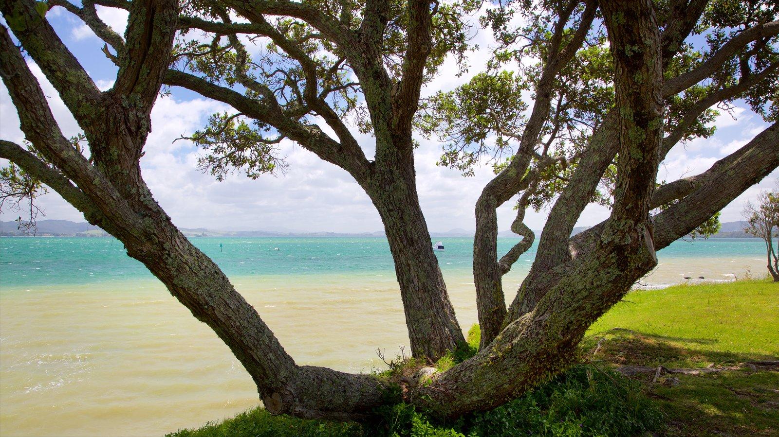 Whangarei Heads mostrando un jardín y vistas generales de la costa