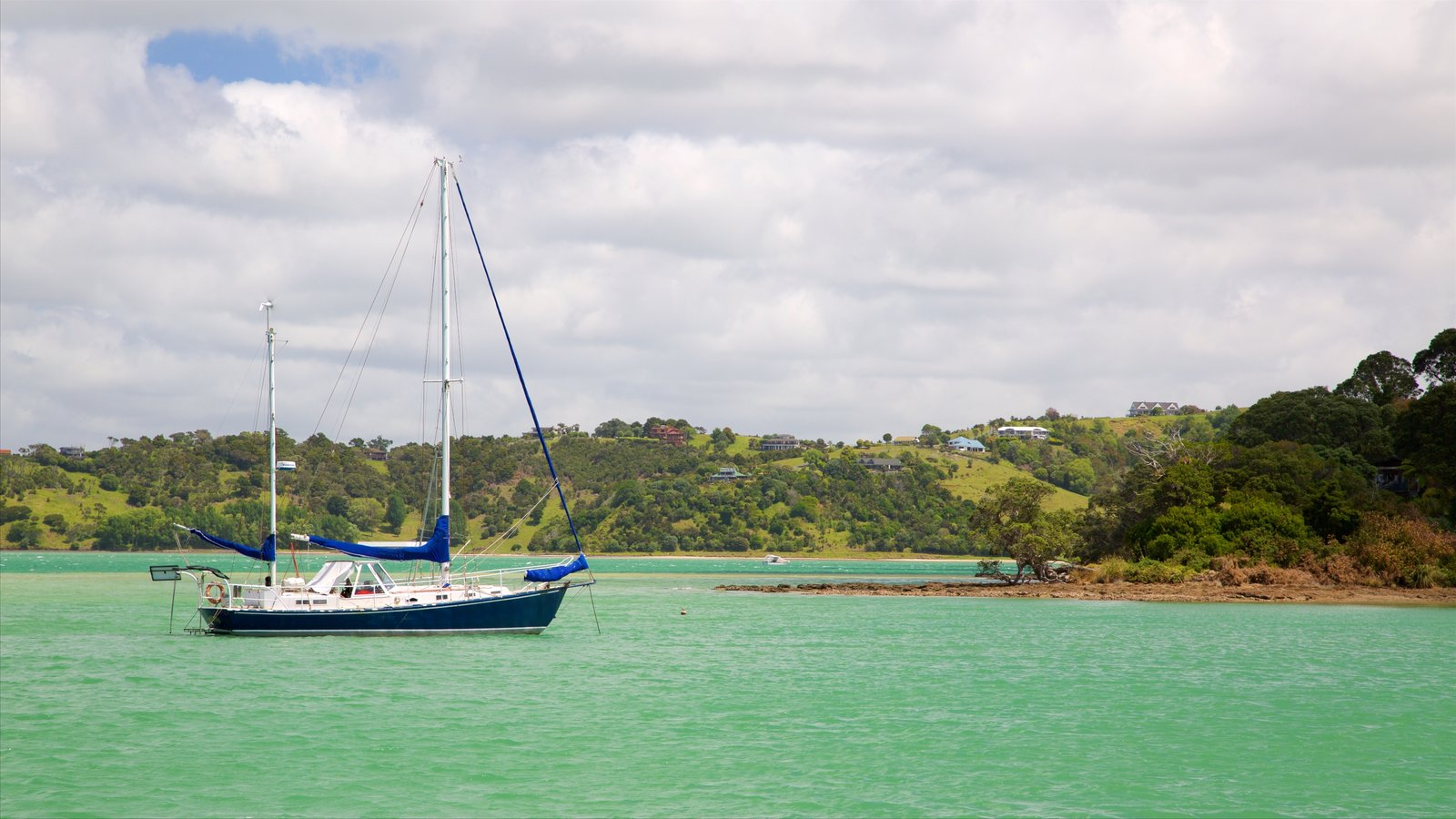 Whangarei ofreciendo una bahía o puerto, navegación y costa rocosa