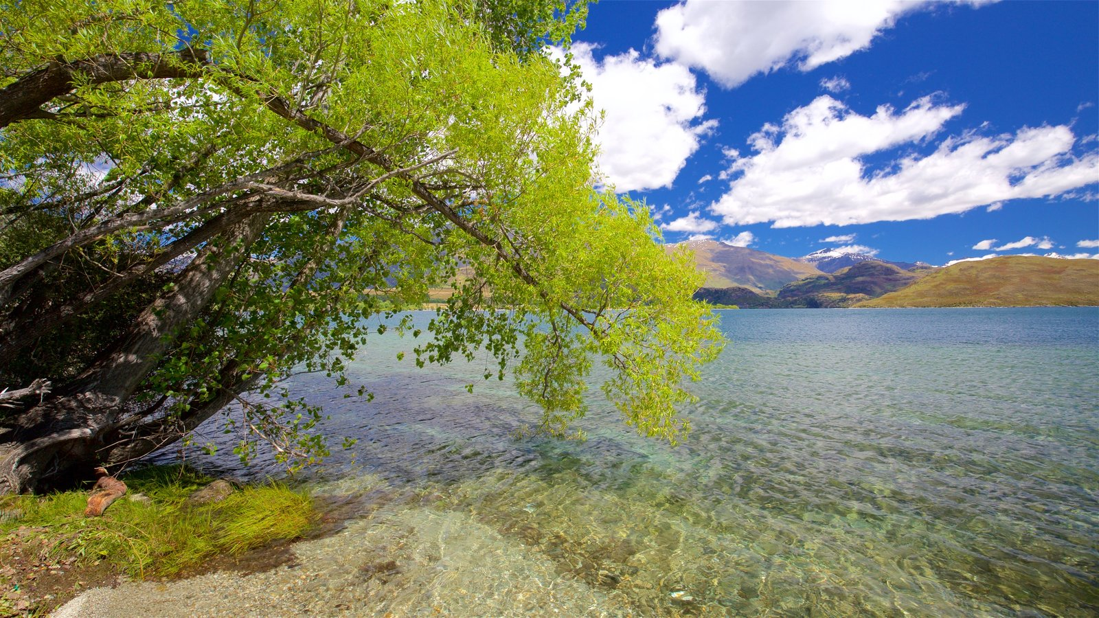Wanaka featuring a lake or waterhole and a pebble beach