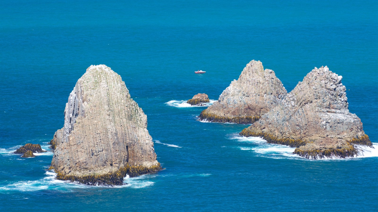 Nugget Point Lighthouse showing rugged coastline and boating