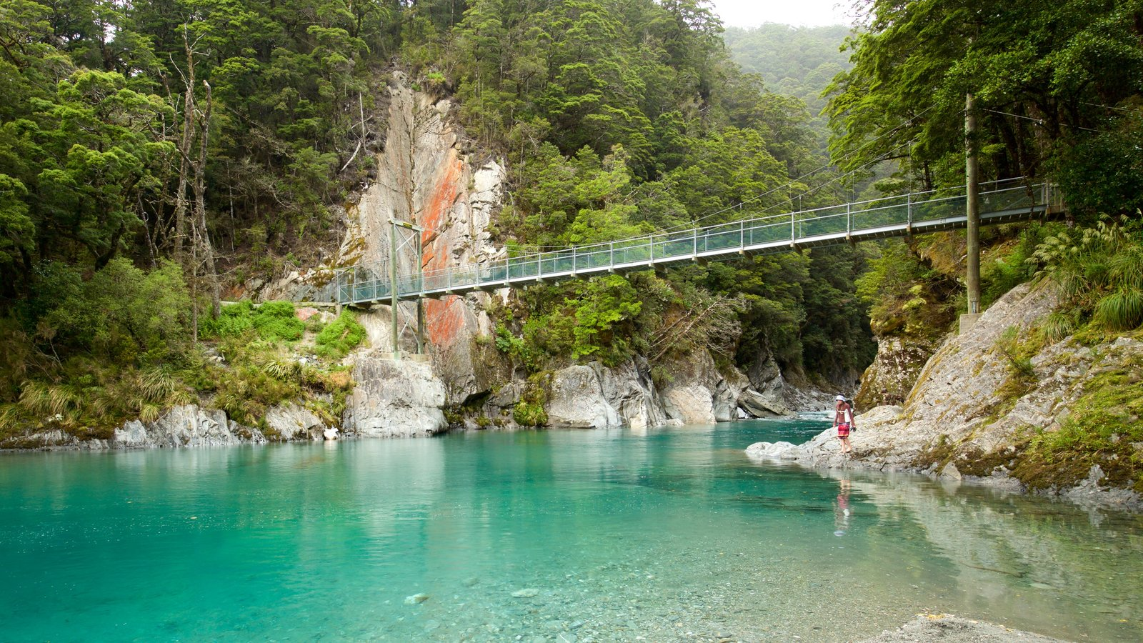 Wanaka which includes a bridge, forest scenes and a lake or waterhole