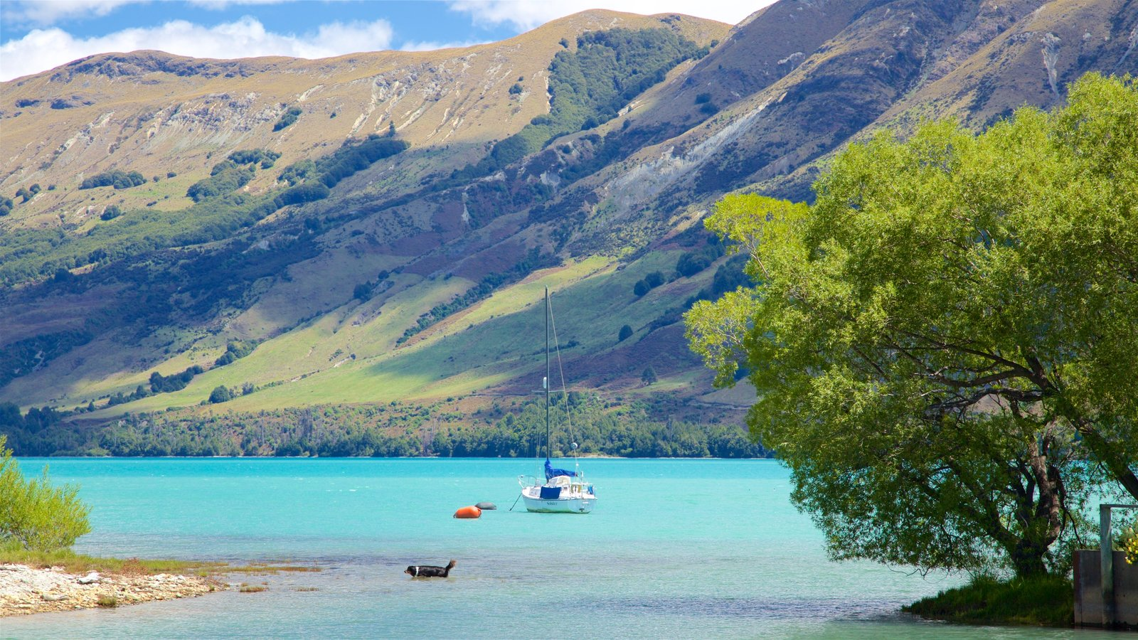 Glenorchy which includes mountains, sailing and a pebble beach