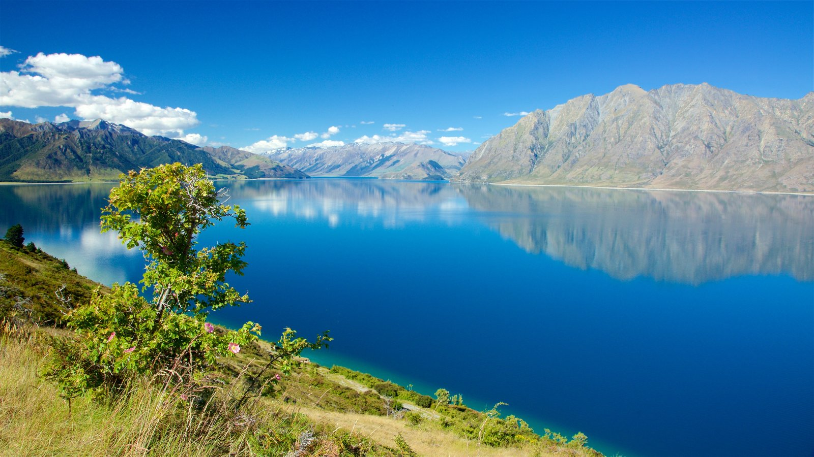 Lake Hawea which includes a lake or waterhole and mountains