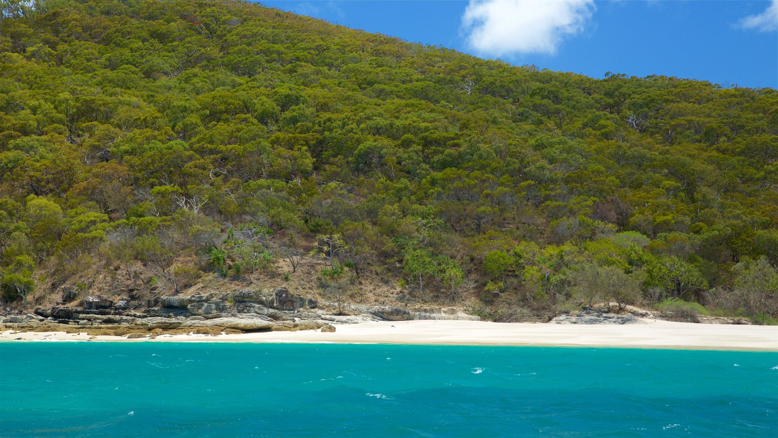 Great Keppel Island: Great Keppel Island Pictures: View Photos & Images Of