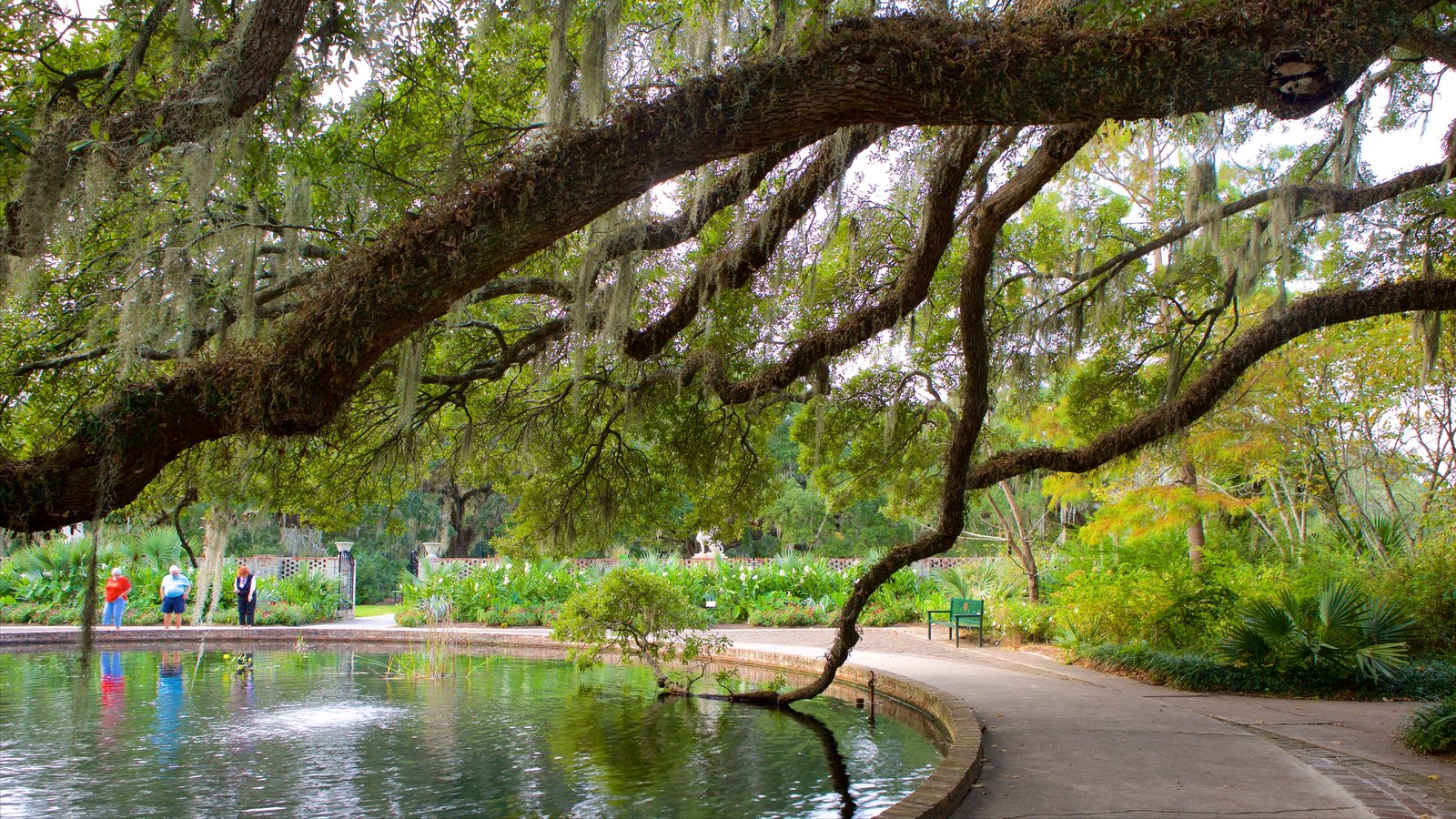 Gardens & Parks Pictures: View Images of Brookgreen Gardens