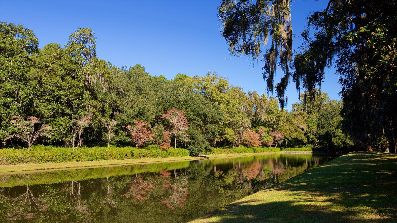 Middleton Place que inclui um jardim e um rio ou córrego
