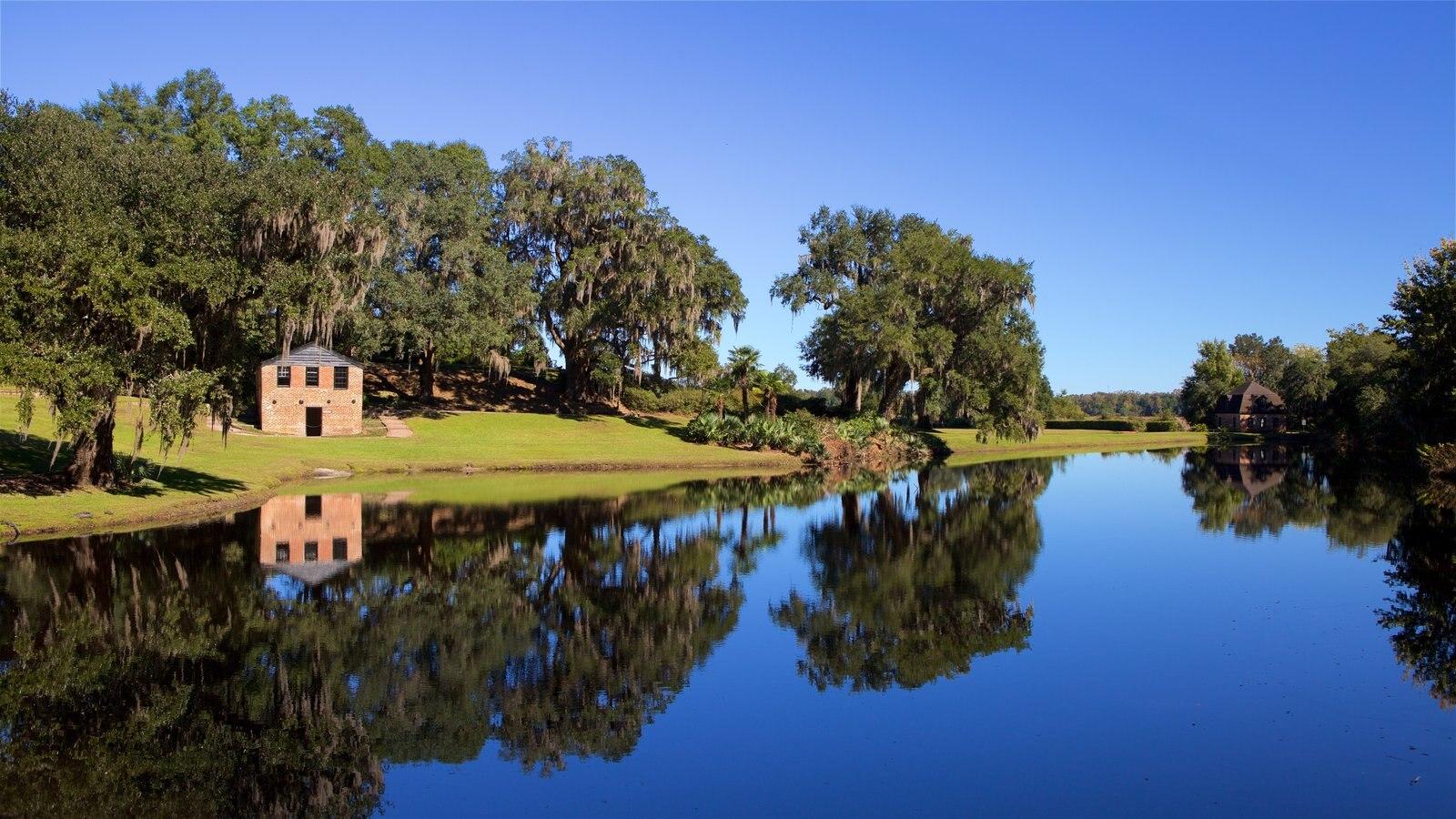 Middleton Place que inclui um rio ou córrego e um parque