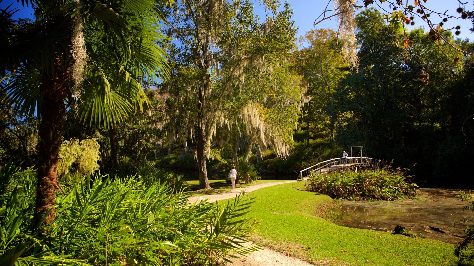 Middleton Place Pictures: View Photos & Images of Middleton Place