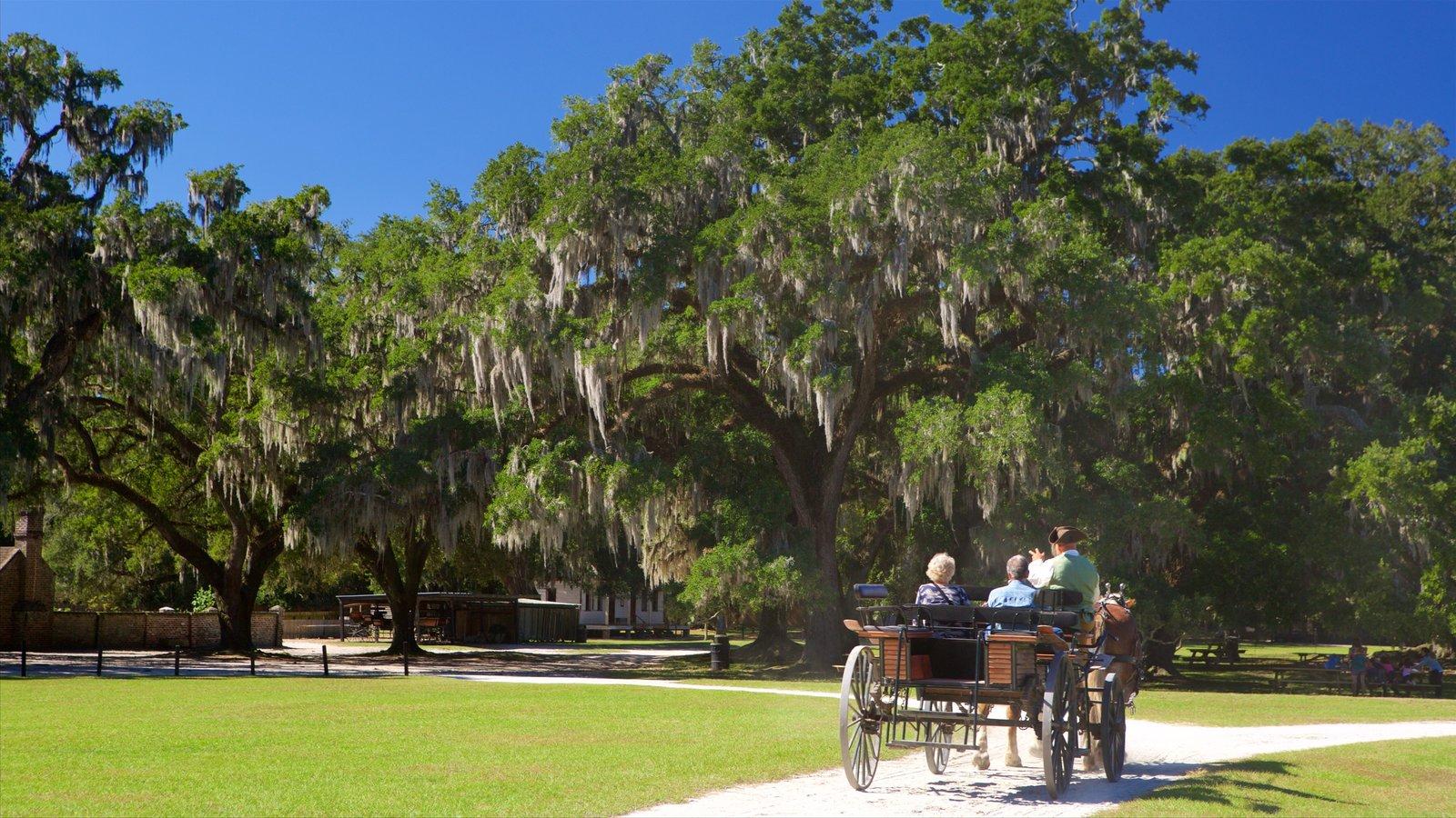 Middleton Place que inclui cavalgada e um parque assim como um casal