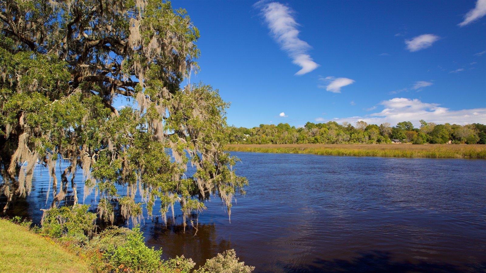 Magnolia Plantation and Gardens caracterizando um rio ou córrego e pântano