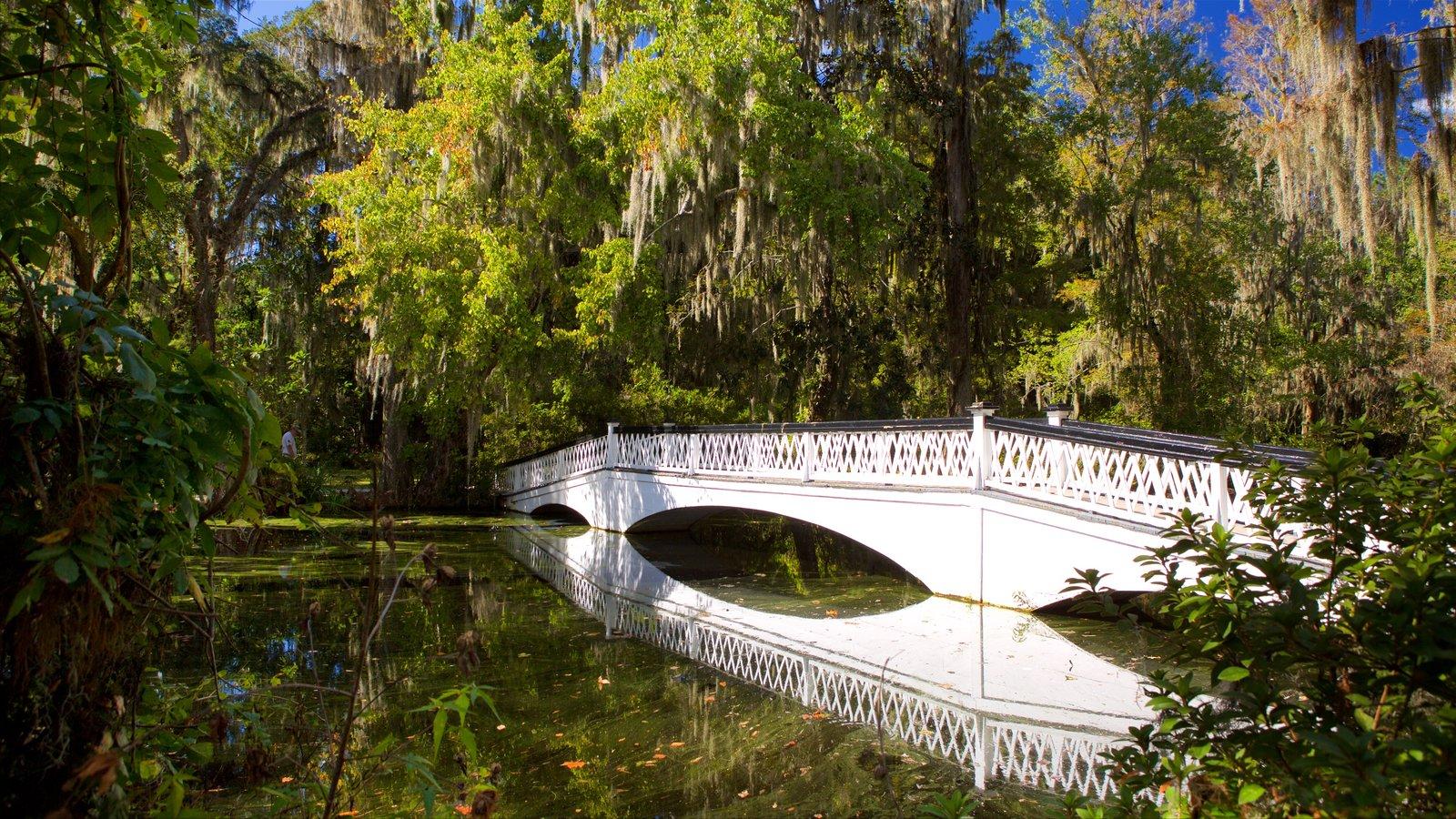 Magnolia Plantation and Gardens caracterizando uma ponte, um rio ou córrego e um jardim