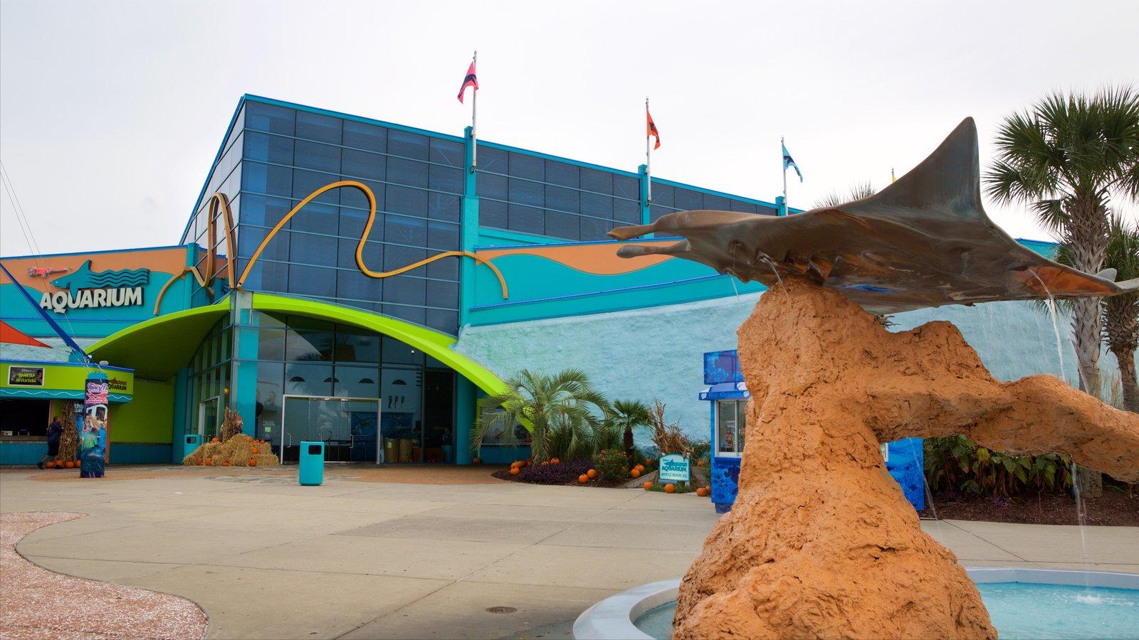 Ripley\'s Aquarium mostrando uma fonte e vida marinha