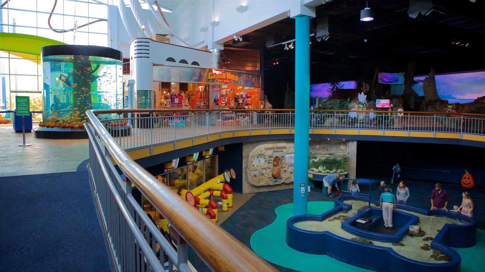 Ripley\'s Aquarium caracterizando vida marinha e vistas internas