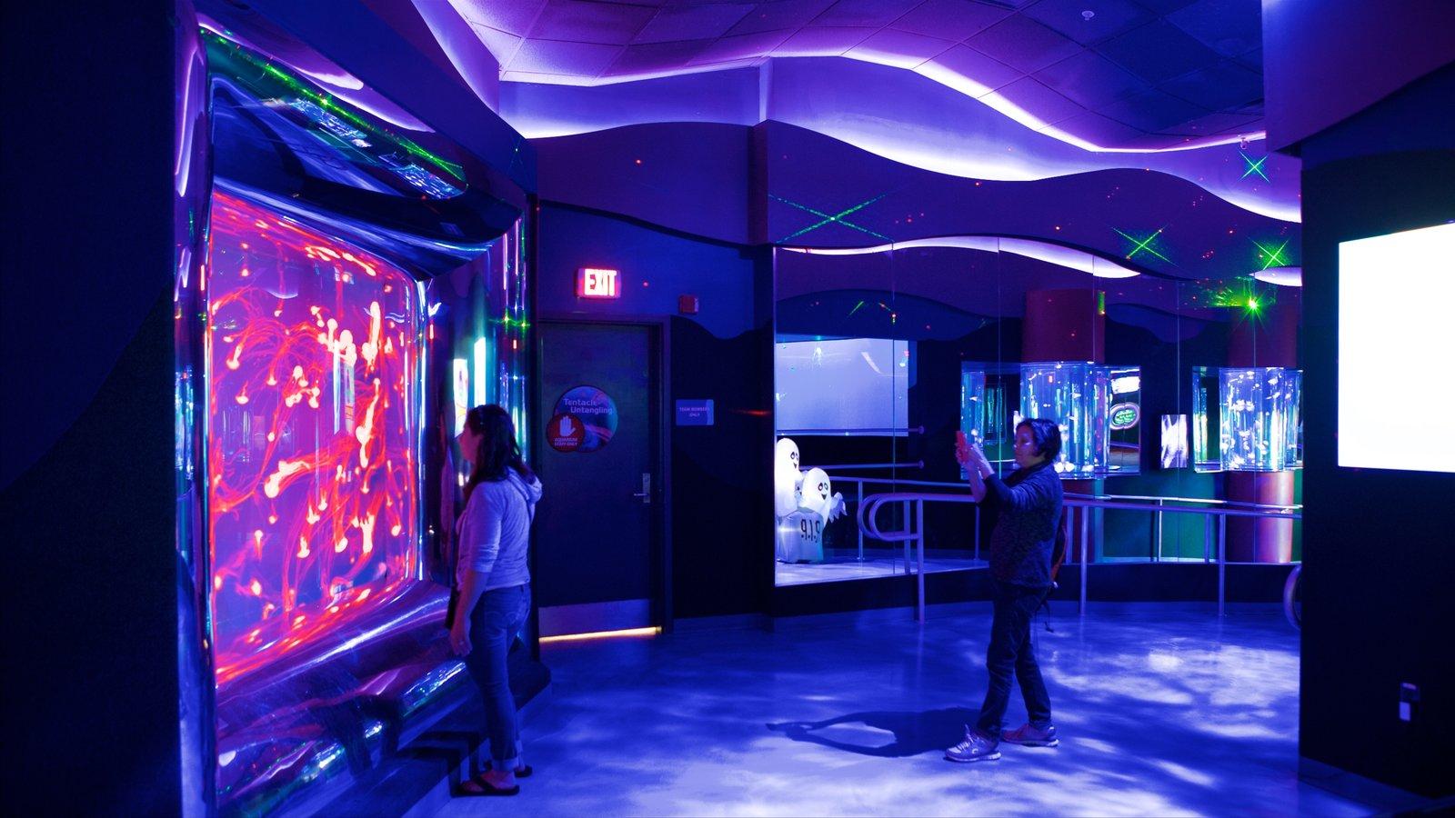 Ripley\'s Aquarium mostrando vistas internas e vida marinha assim como uma mulher sozinha