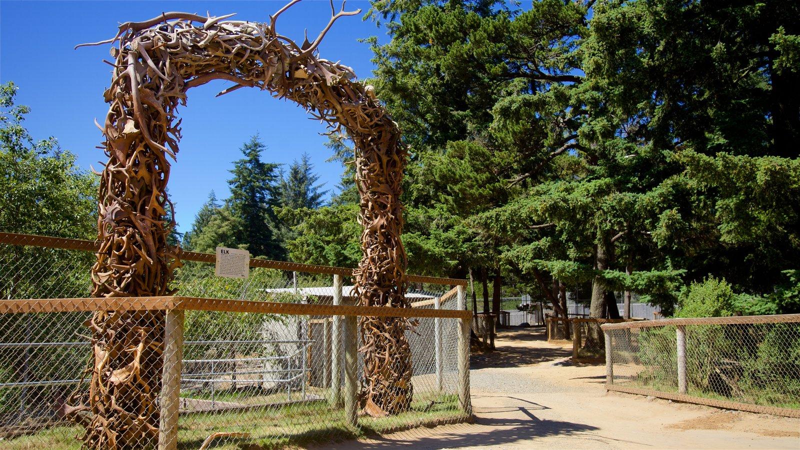 West Coast Game Park Safari caracterizando um jardim