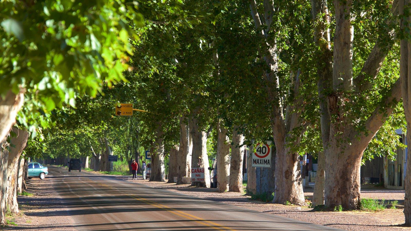Região Vinícola de Mendoza caracterizando cenas de rua