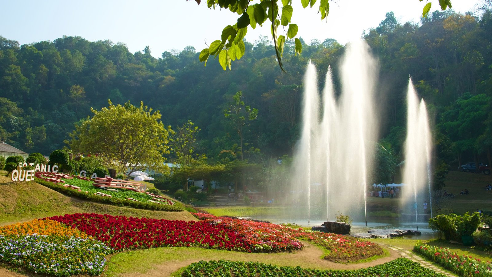 Queen Sirikit Botanical Garden