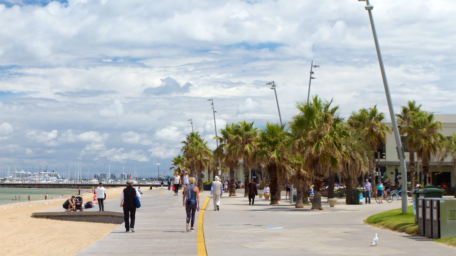 St Kilda Beach Showing A Sandy As Well Small Group Of People