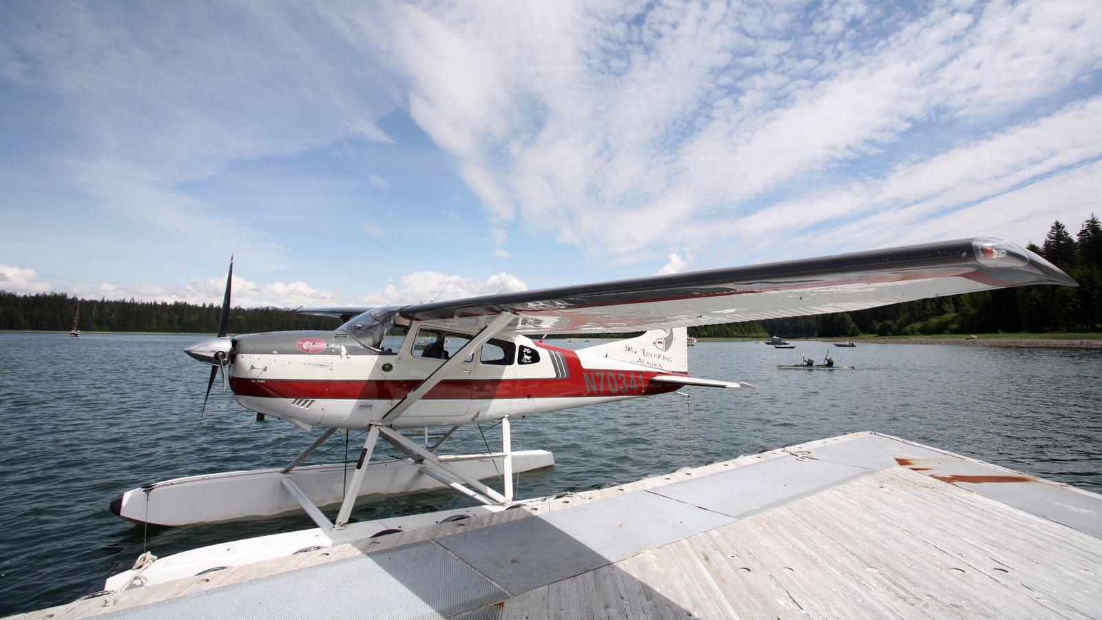 Glacier Bay National Park showing aircraft and a bay or harbor