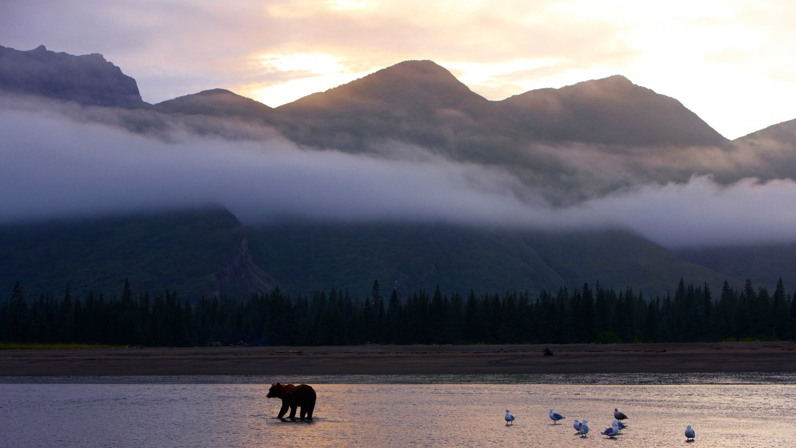 Lake Clark National Park and Preserve which includes mist or fog and dangerous animals