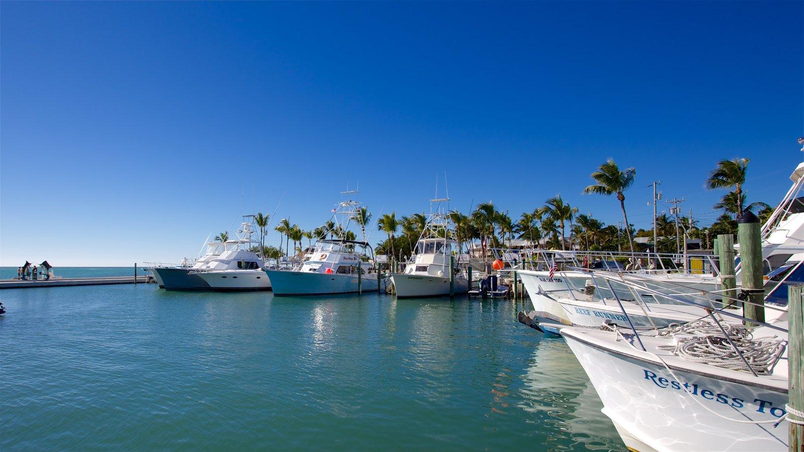 Sul da Flórida que inclui uma baía ou porto, cenas tropicais e paisagens litorâneas