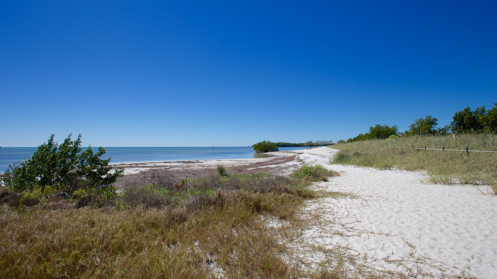 curry hammock state park showing a beach and a bay or harbor nature pictures  view images of marathon  rh   expedia
