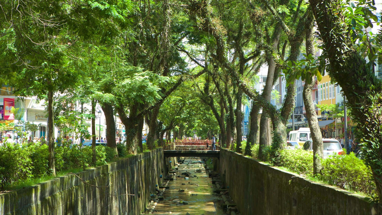 Petrópolis mostrando um parque e um rio ou córrego