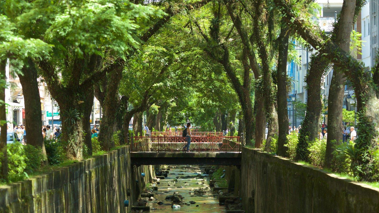 Petrópolis caracterizando uma ponte, um parque e um rio ou córrego