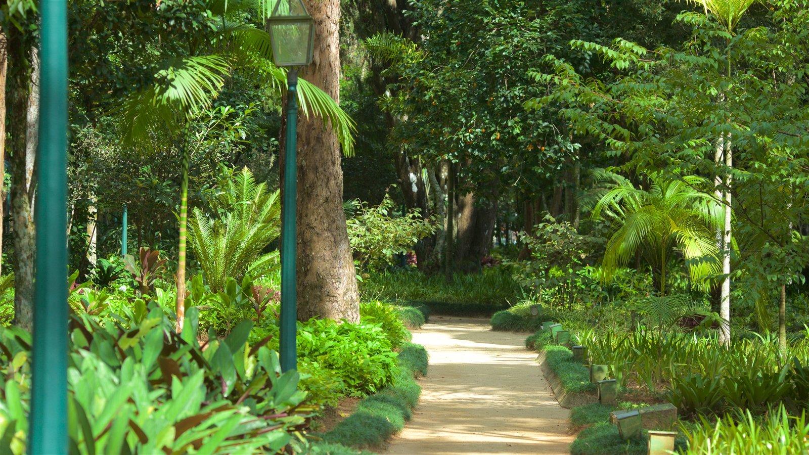 Museu Imperial que inclui um parque