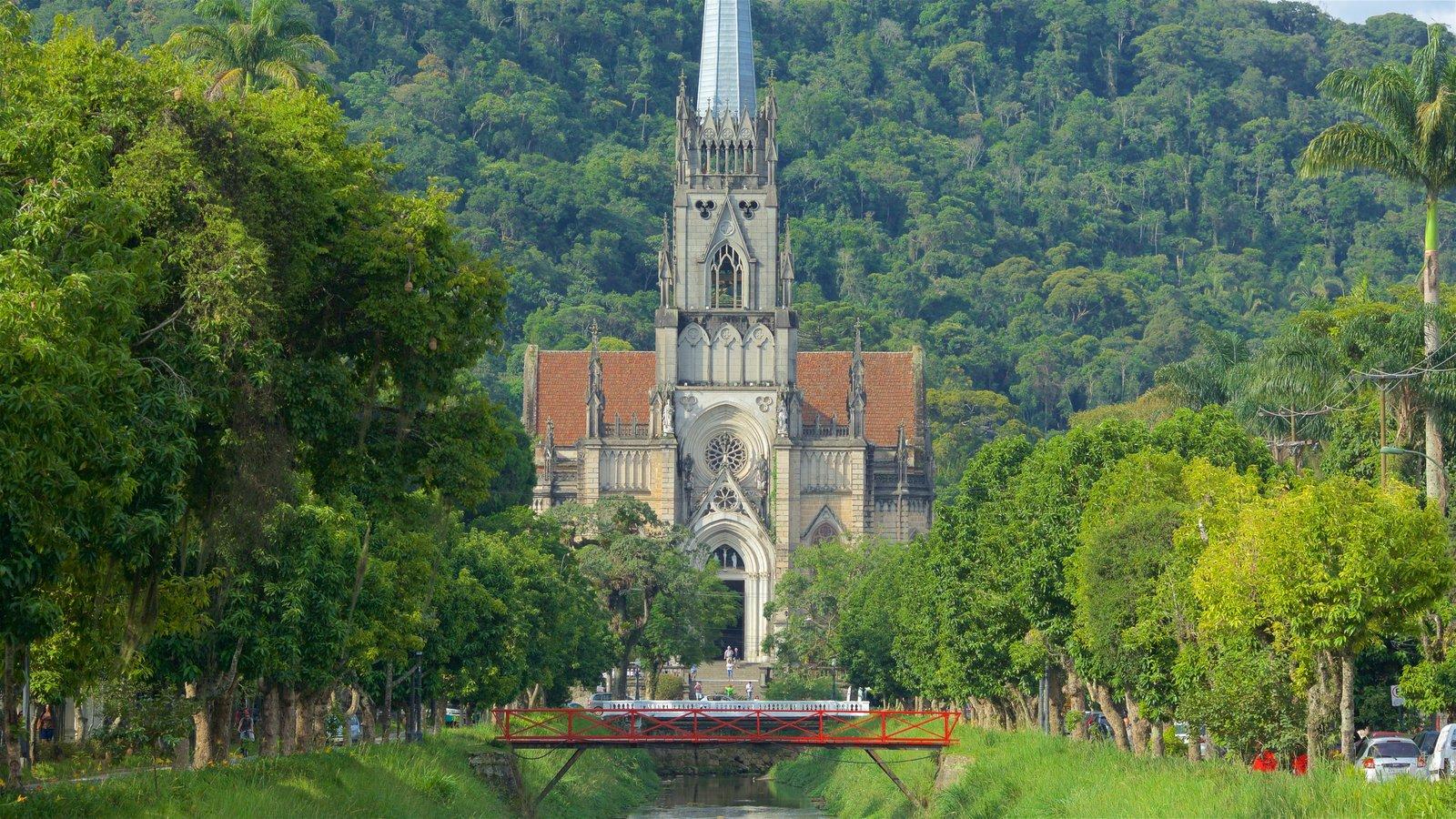Catedral de São Pedro de Alcântara caracterizando uma ponte, um jardim e arquitetura de patrimônio
