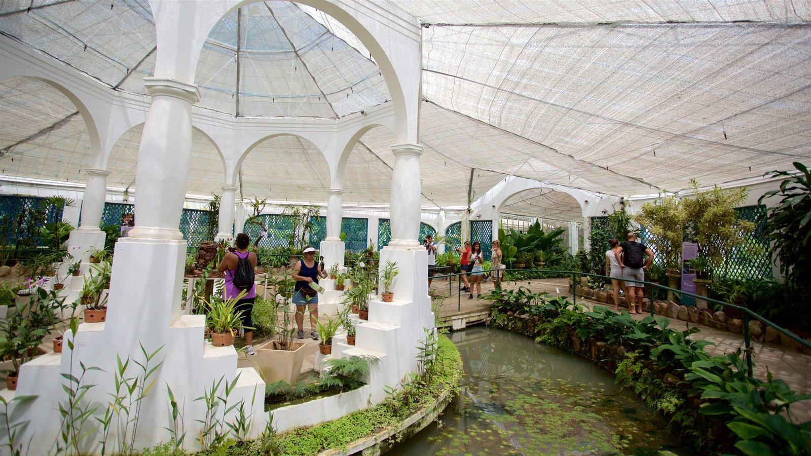 Fotos de parques y jardines ver im genes de brasil for Botanico jardin