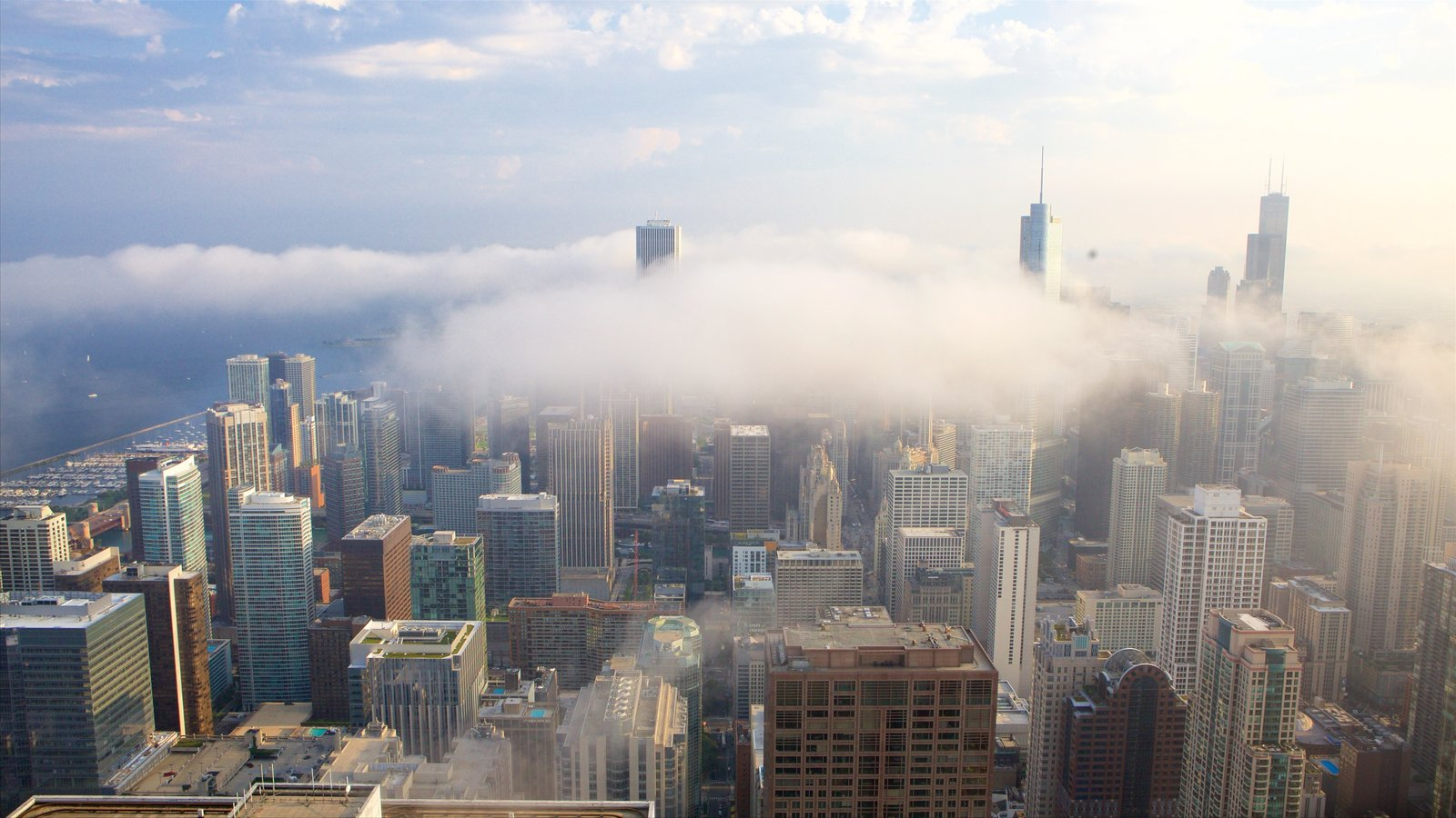 Willis Tower showing a high rise building, mist or fog and cbd
