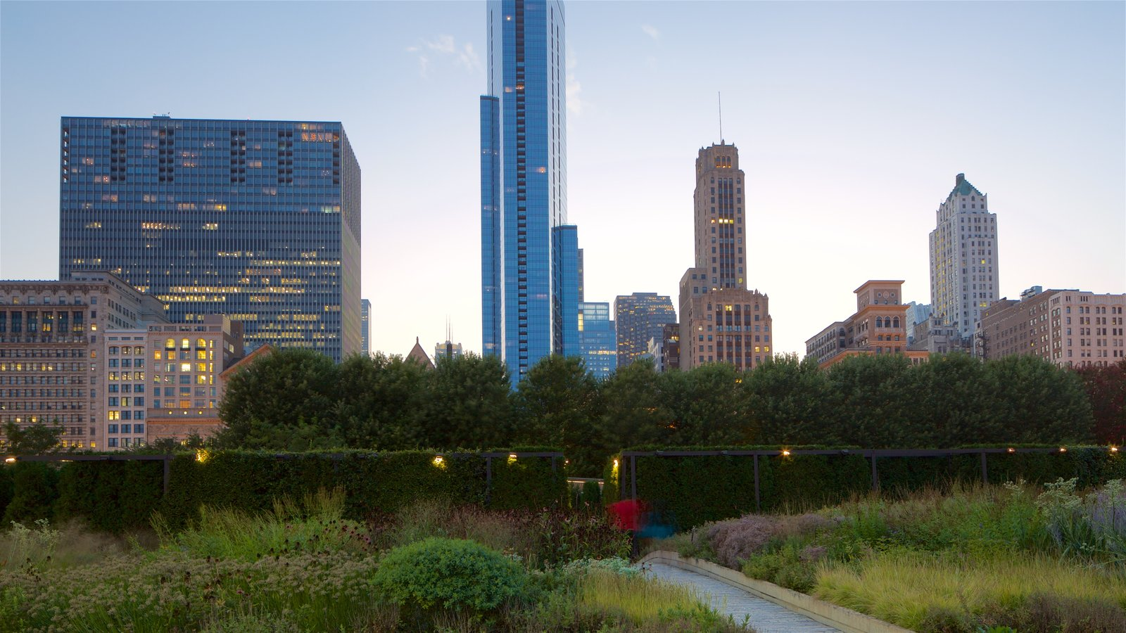 Millennium Park featuring central business district, a city and a high rise building