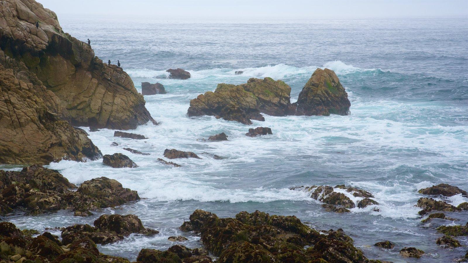 17-Mile Drive caracterizando litoral acidentado