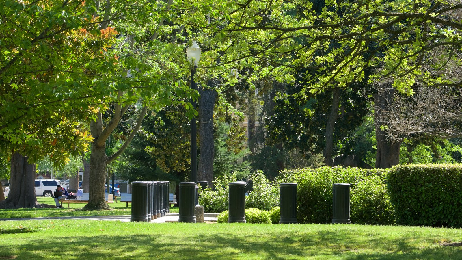 Sacramento Capitol Park Featuring A Park