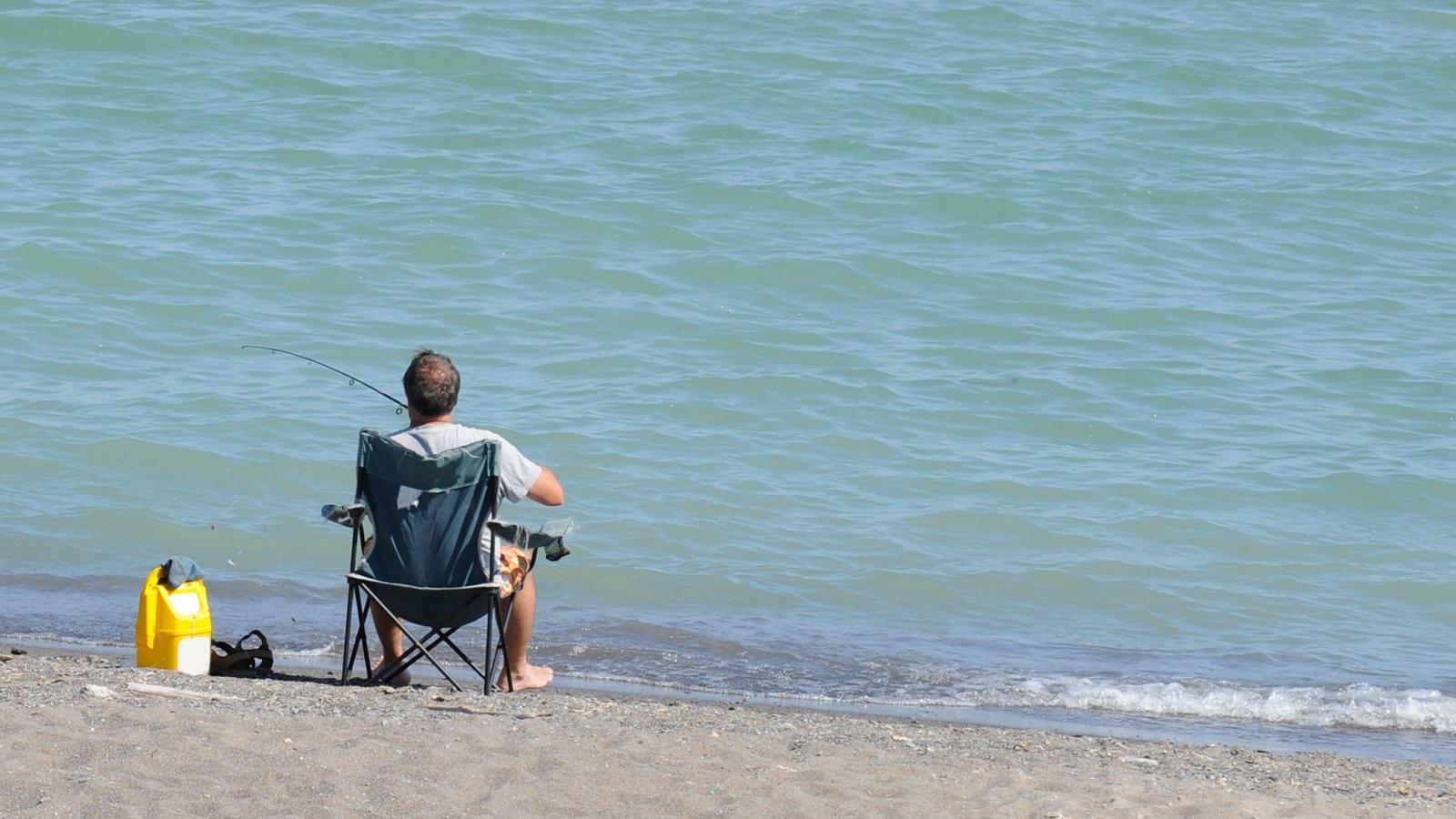 Sur de Ontario mostrando pesca y una playa y también un hombre