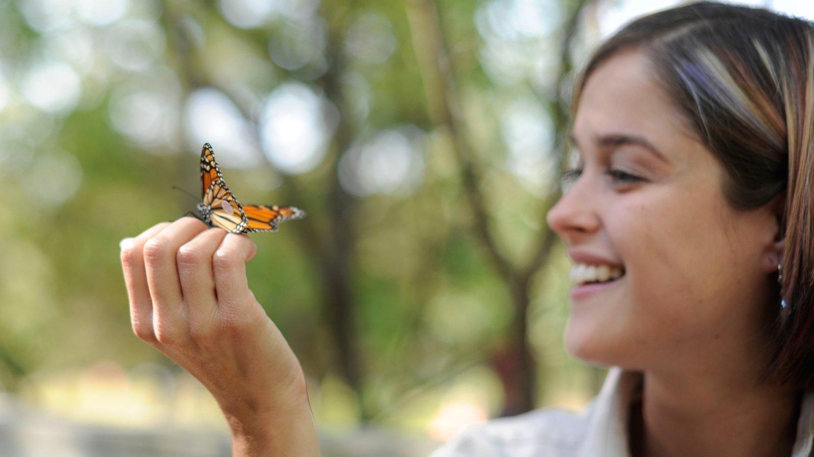 Sur de Ontario mostrando animales tiernos y también una mujer