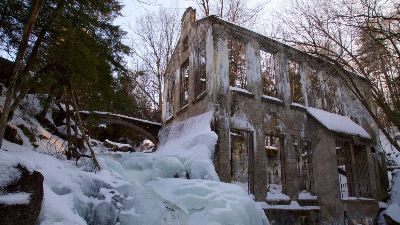 Ottawa mostrando neve