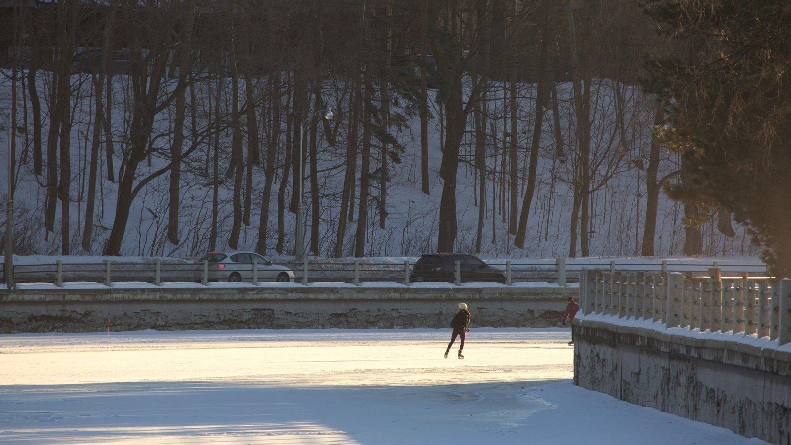 Rideau Canal caracterizando esqui na neve e neve assim como uma mulher sozinha