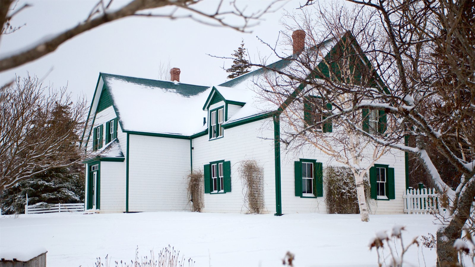 Green Gables featuring a house and snow