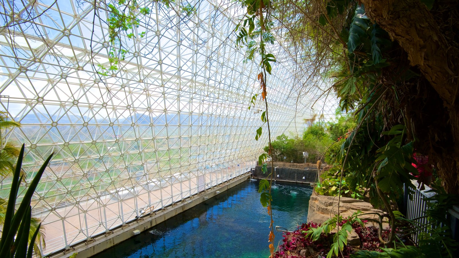 Biosphere 2 Pictures: View Photos & Images of Biosphere 2