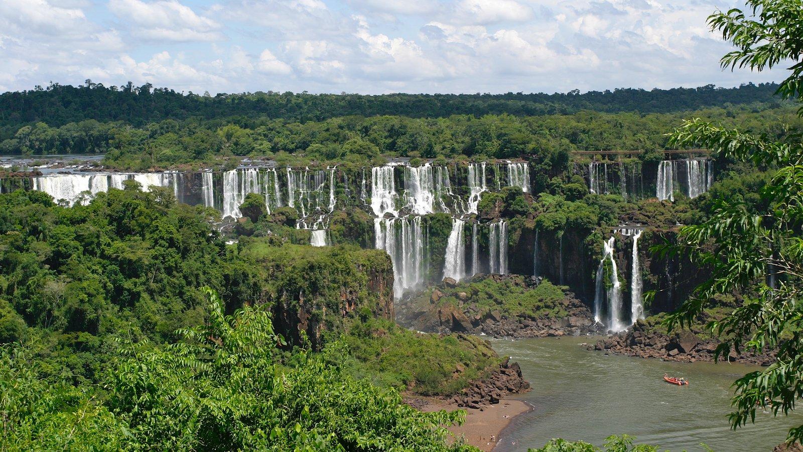 Região Sul que inclui um rio ou córrego, uma cascata e floresta tropical