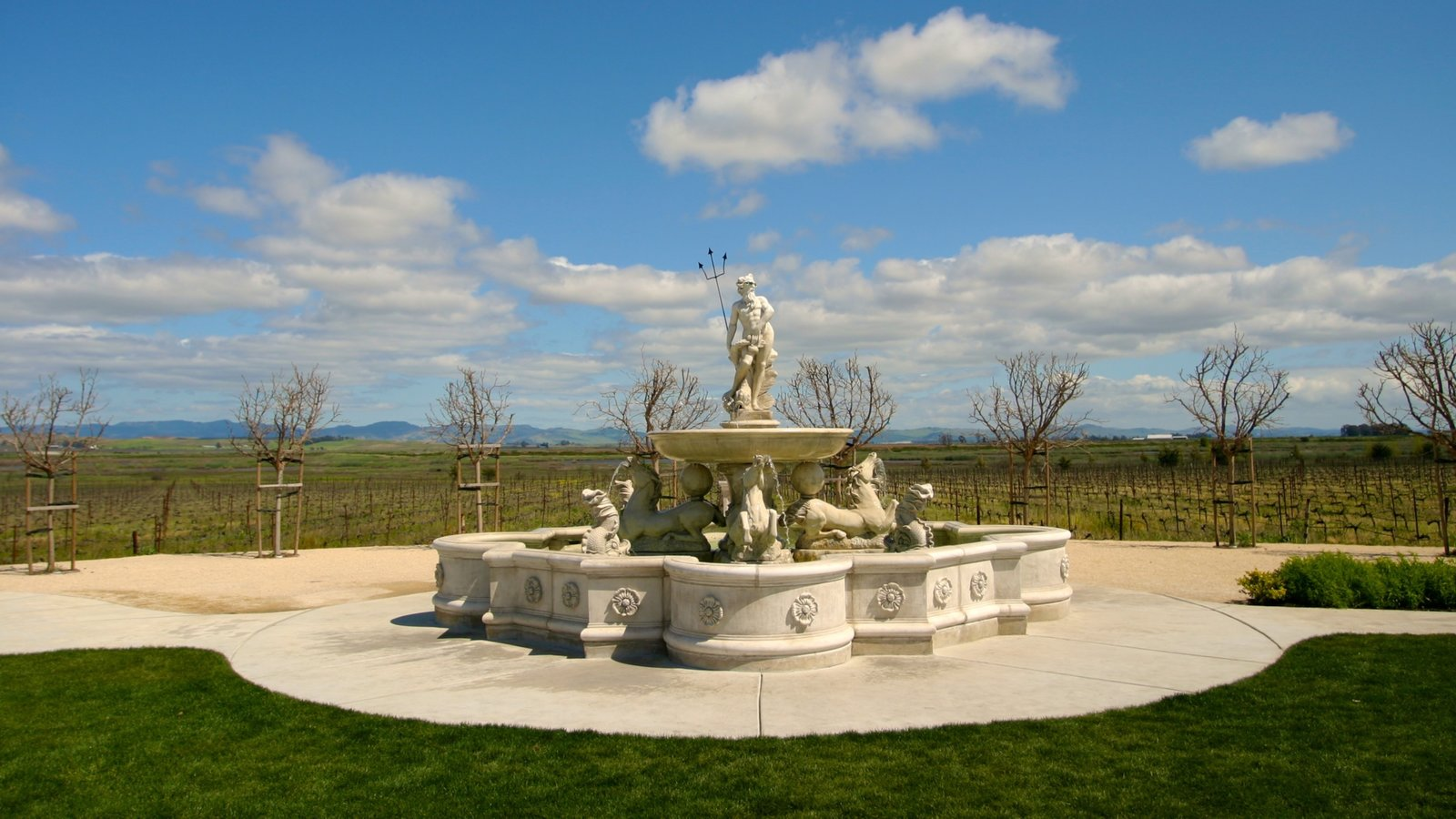 California Wine Country which includes a fountain