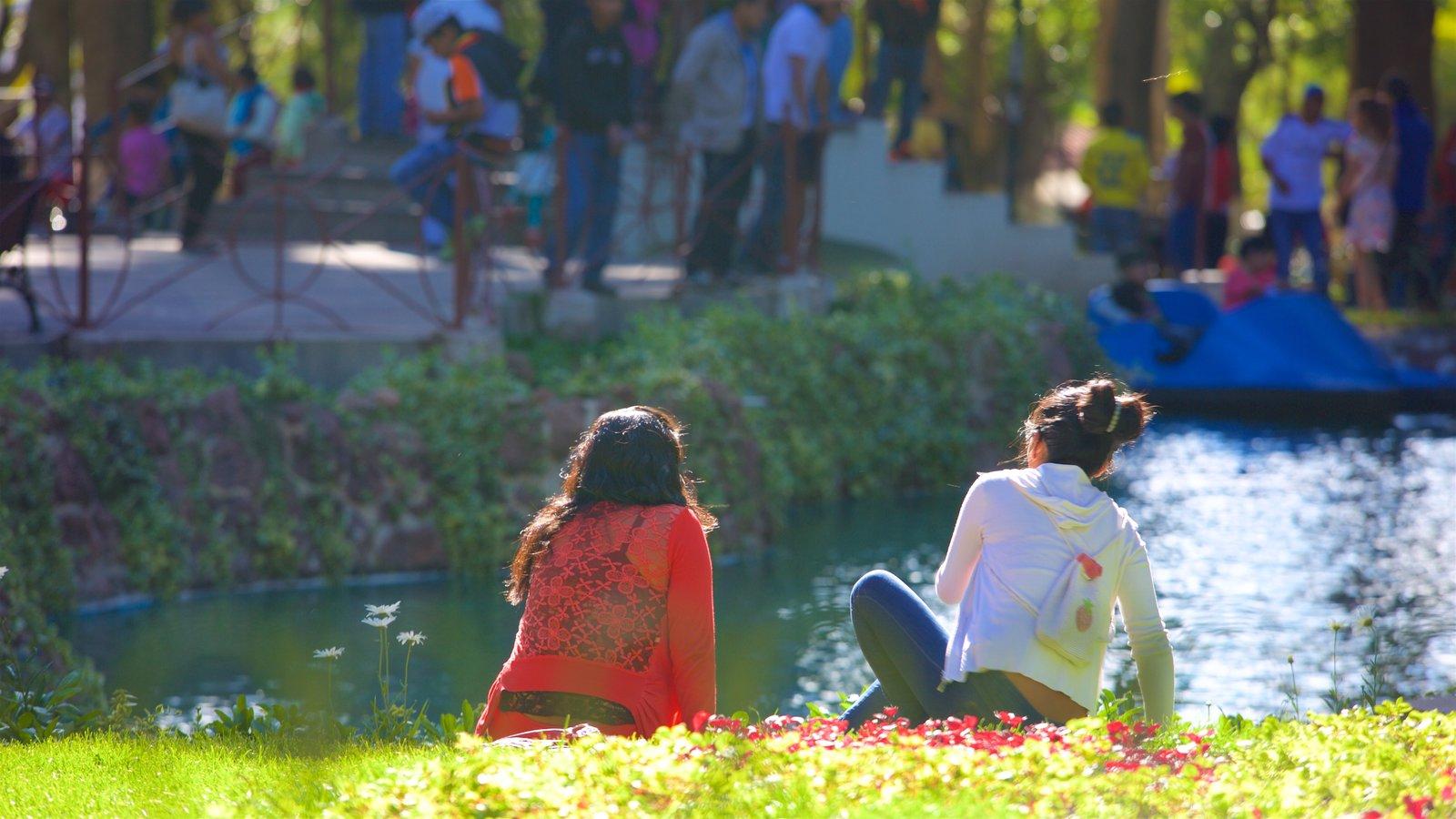 Yungas Bolivianas que inclui um jardim assim como um casal