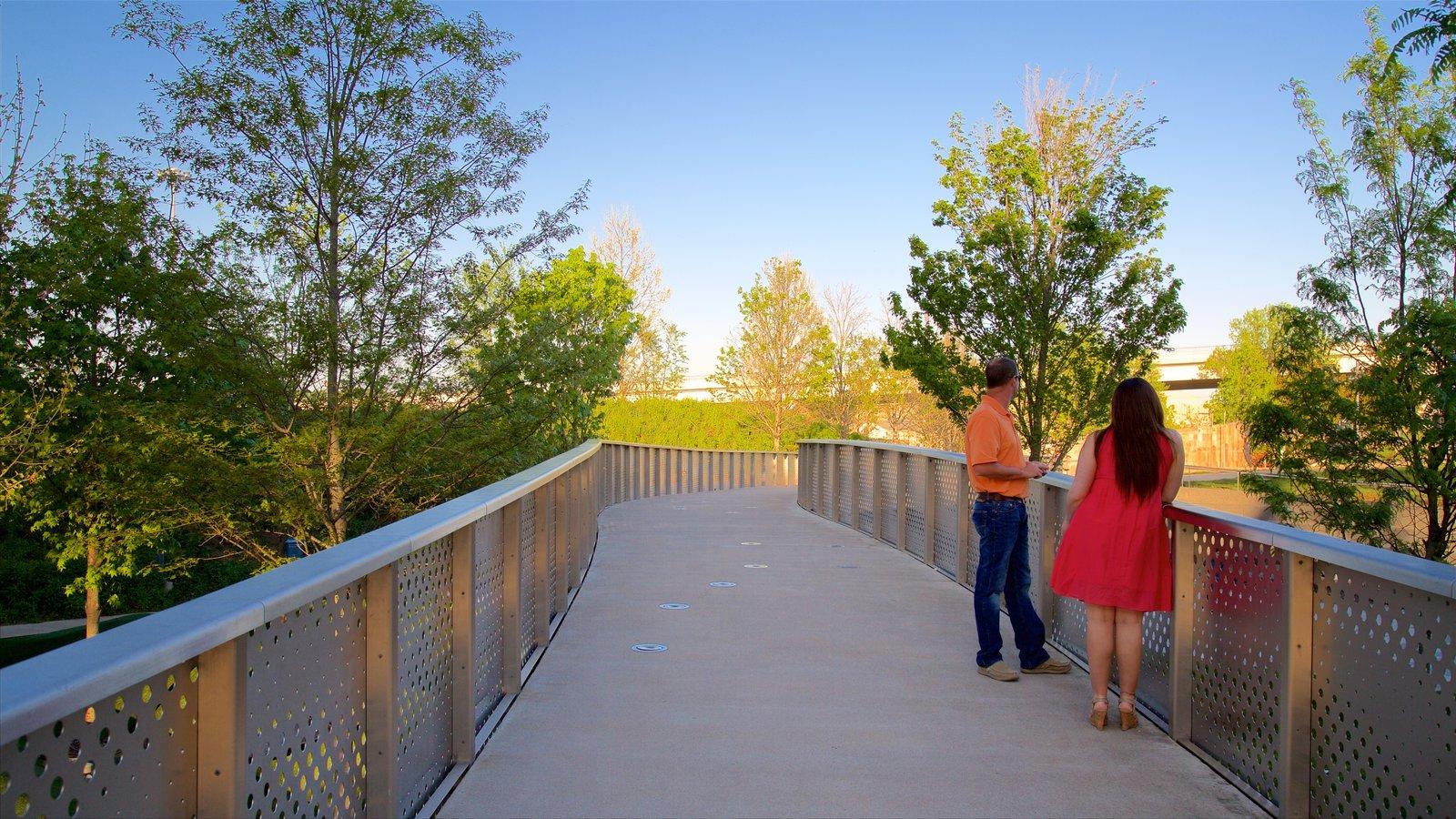 Cumberland Park mostrando un parque y también una pareja